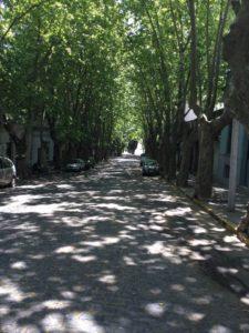 Ulice Buenos Airesa