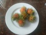 Sretni blagdani  - voće za koje možda nikad niste čuli (2)